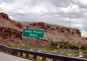 Holy Moses Wash!