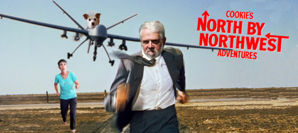 North by Northwest - Cookie's Adventures